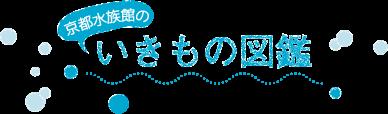 京都水族館のいきもの図鑑