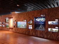 大幅な展示変更を行った「山紫水明ゾーン」