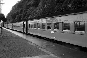 19860800-6
