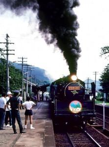 19810827-8