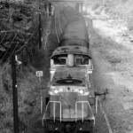 19810429-15