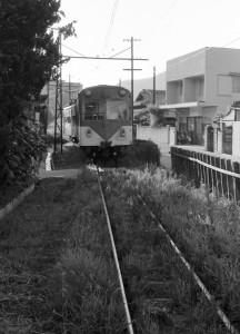 19810800-3