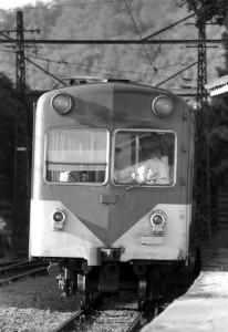 19810800-4